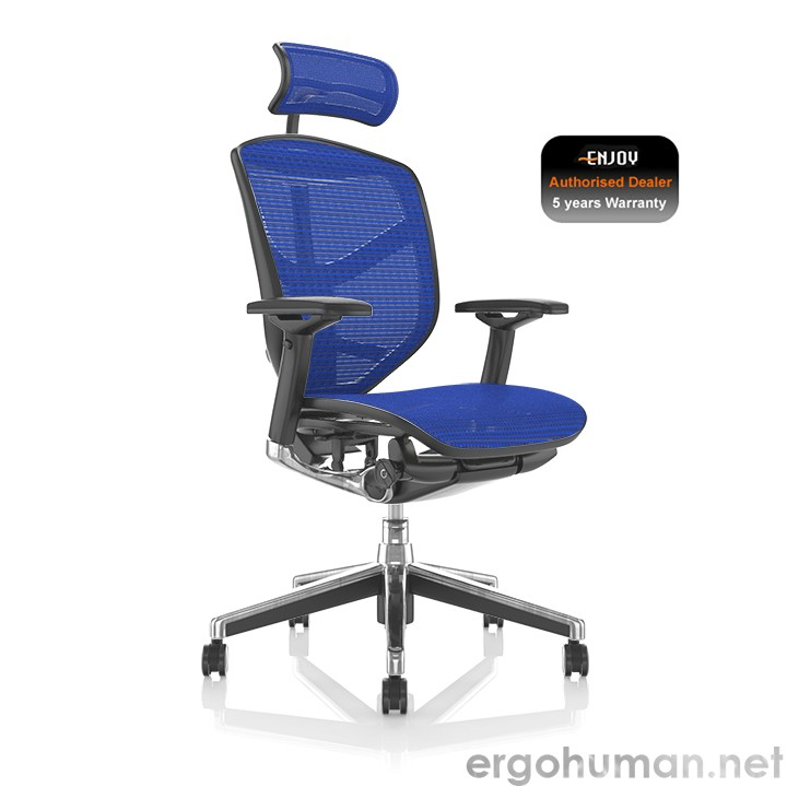 Enjoy Blue Mesh Office Chairs