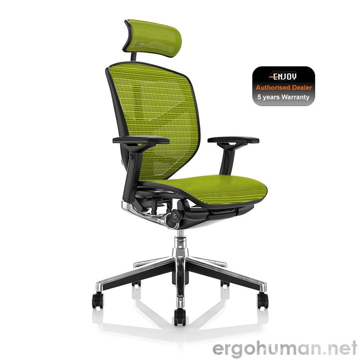 Enjoy Green Mesh Office Chair